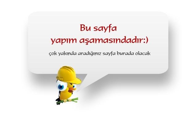 sayfa_yapima